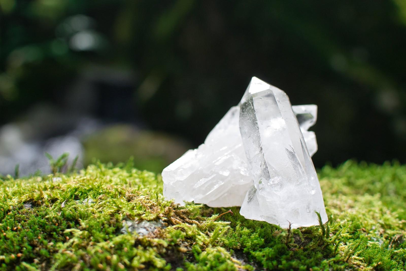 自由研究塩の結晶